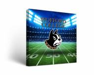 Wofford Terriers Stadium Canvas Wall Art