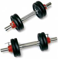 York Cast Iron 30 Lb Adjustable Dumbbell Set