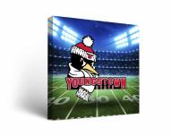 Youngstown State Penguins Stadium Canvas Wall Art