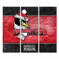 Youngstown State Penguins Triptych Double Border Canvas Wall Art