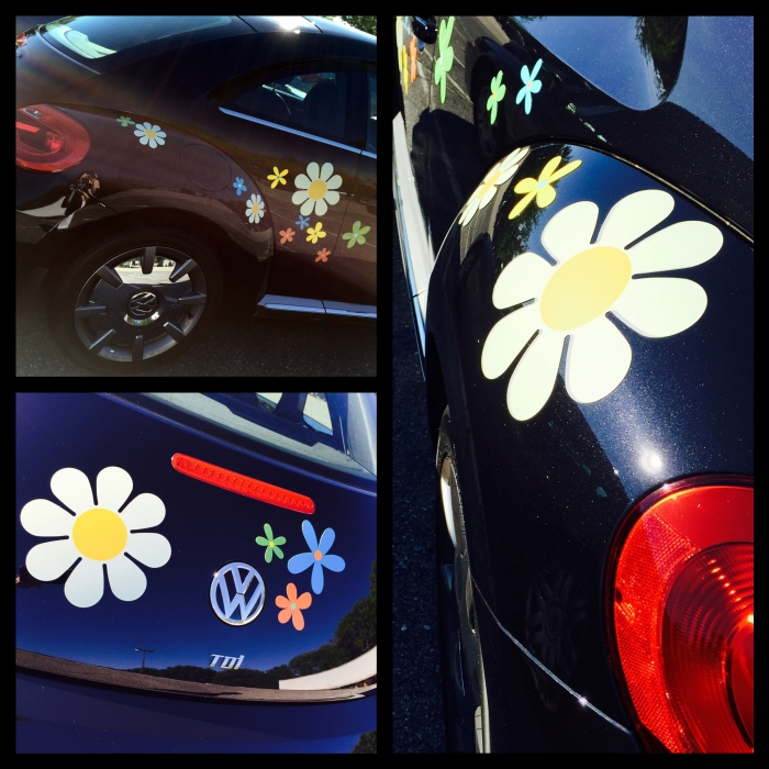 Daisy Magnets Daisy Car Magnet Flowers White Magnetic Daisies - Magnetic car decals flowers